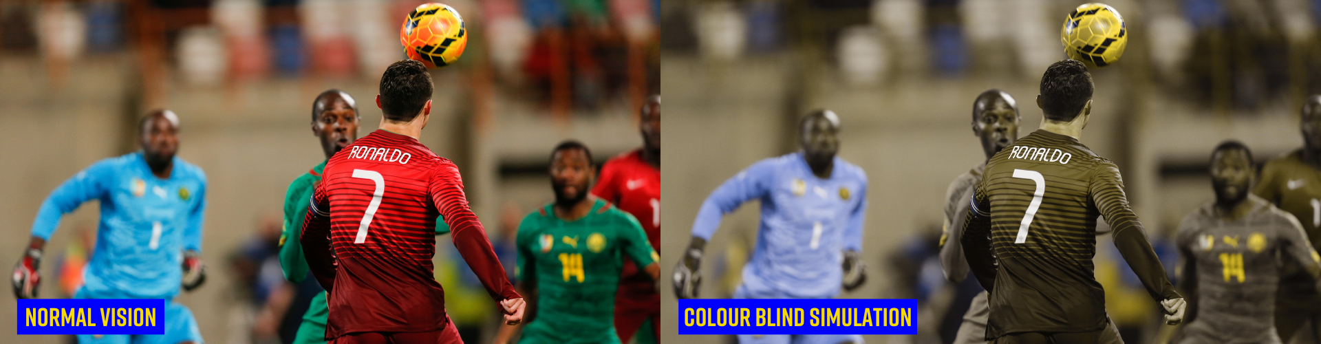 Colour Blind Awareness Day: An important platform for promoting Colour Blind Awareness in Sport header